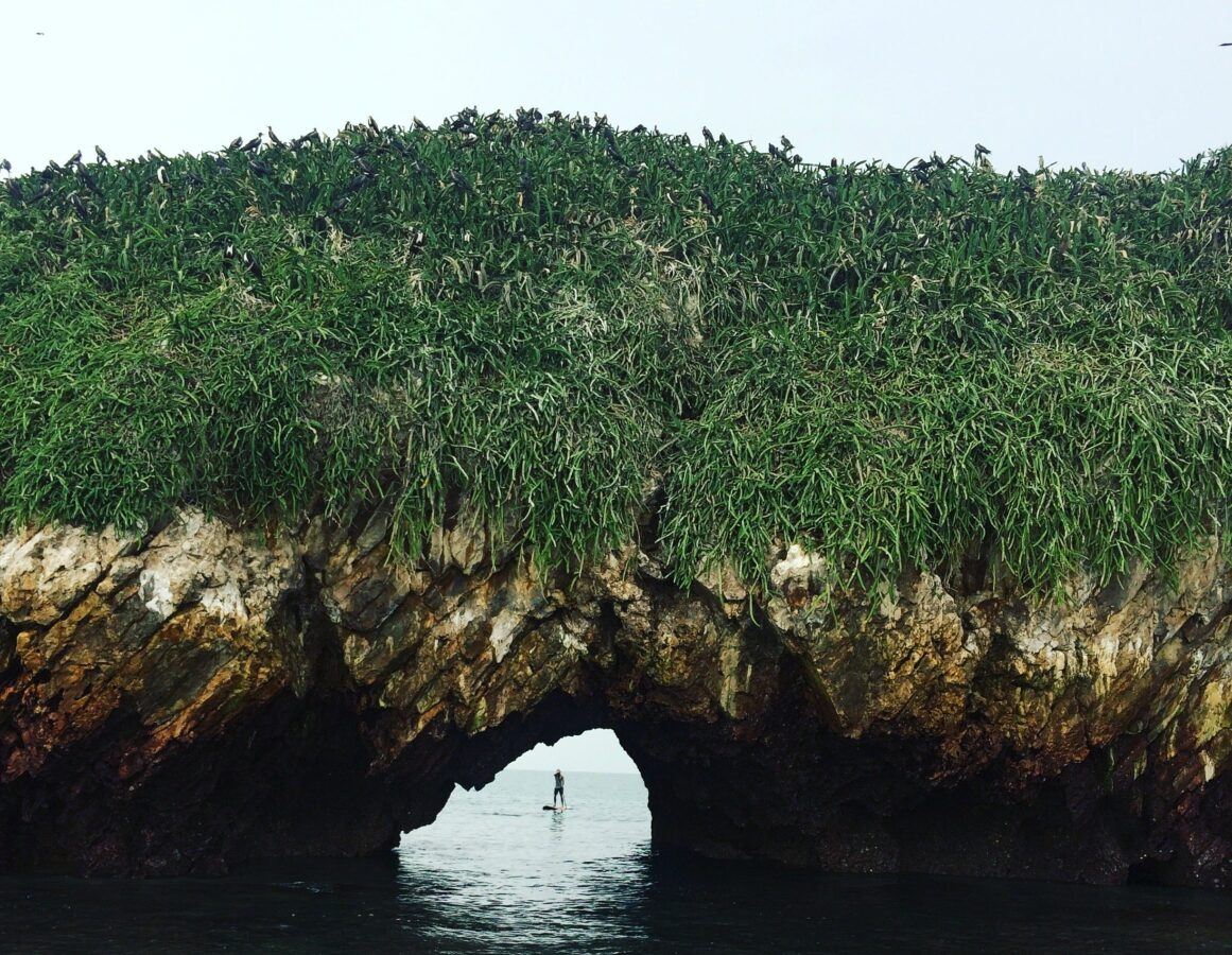 Panama Farallon Island Advanced Island SUP Tour