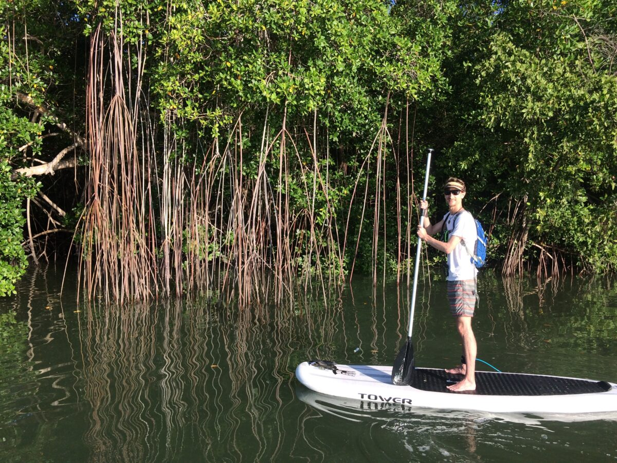 Chame Mangroves SUP Tour in Panama
